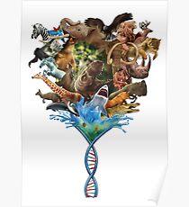 Die Spirale des Lebens Poster