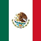 Mexico Flag by Brogy2323
