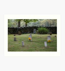 Old Virginia Cemetery Art Print