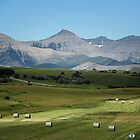 Farming, Foothills and Mountains by Vickie Emms