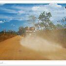 Dusty Road by Adri  Padmos