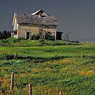 Nova Scotia abandoned house by milton ginos
