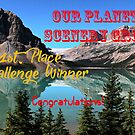 Group Challenge Banner Entry by Vickie Emms