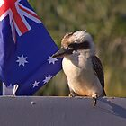 A Fair Dinkum Aussie on the edge by myraj