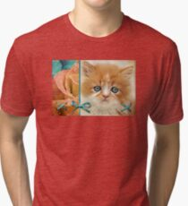 Raindrops on Roses and Whiskers on Kittens Tri-blend T-Shirt