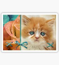 Raindrops on Roses and Whiskers on Kittens Sticker