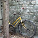 Old yellow bike by caymanlogic