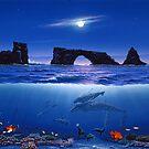 Anacapa Twilight by Tim Laski