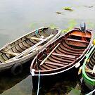 Three Boats by Sandra Pearson