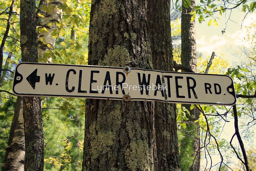 Clearwater Road by Lynne Prestebak