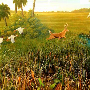 Activity on the Marsh by umpa1