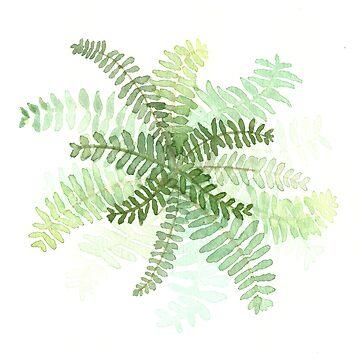 Green Fern Watercolor Minimalist by laurabethlove