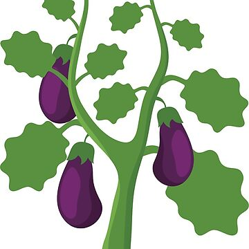 Eggplant by Reethes