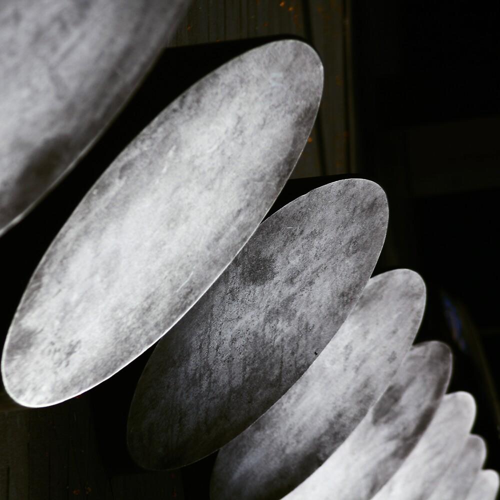 Nude by fernandoprats
