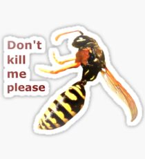 Begging Wasp Sticker