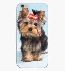Yorkshire terrier puppy iPhone Case