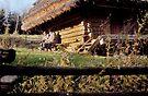 Shevechenko Museum Village by Yuri Lev