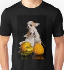 Two puppies chihuahua on a black background T-Shirt