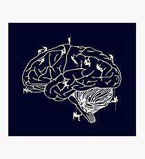 Climbing On The Brain Photographic Print