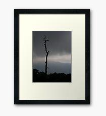 Sparse Framed Print
