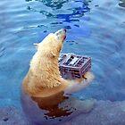 polar bear by ponypal