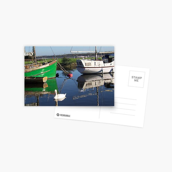 SWAN ON CANAL Postcard