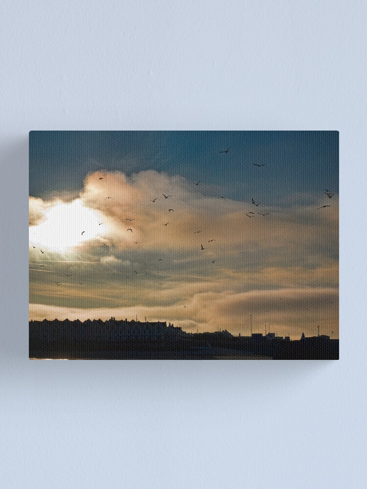 Alternate view of Flocking Seagulls!  Canvas Print