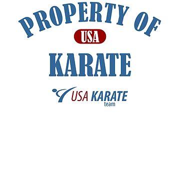 Usa Karate Design Property Of Karate Design by kirillpanteleev