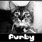 Furby by PrettyKitty