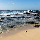 Quintessential Hawaii - Beach Lava Rocks and Waves by Georgia Mizuleva