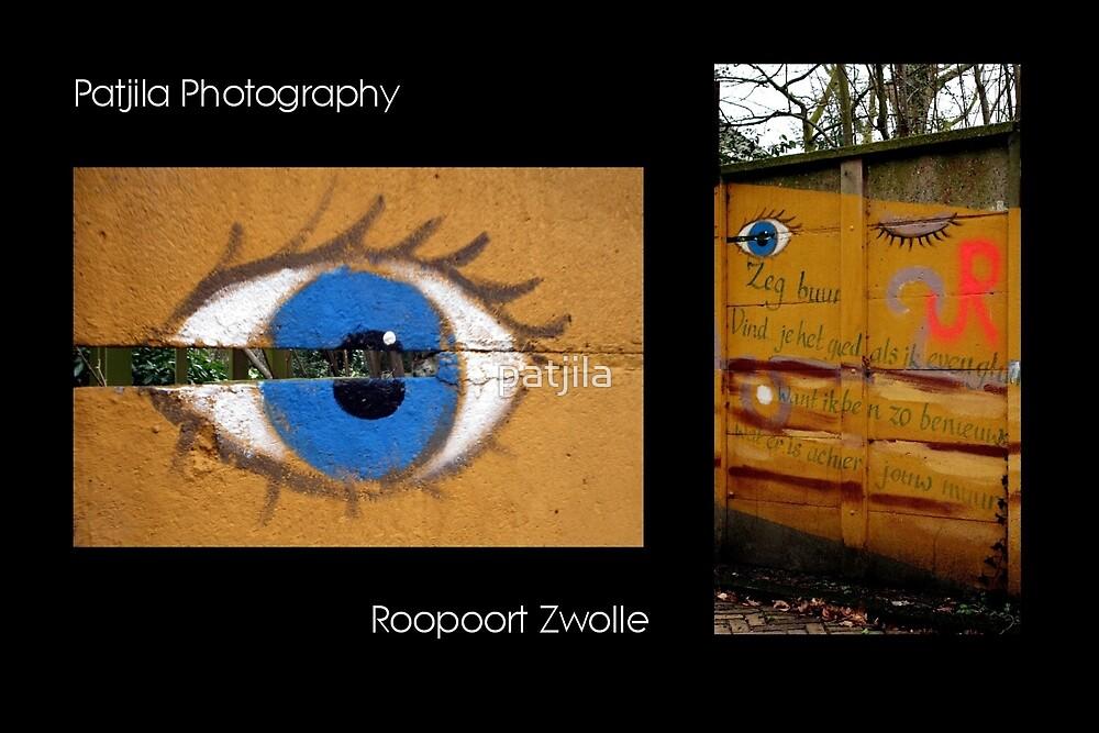 Wall Art Zwolle by patjila