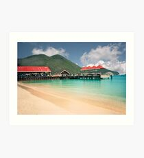 St. Maarten, harbor view Art Print