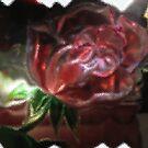 A Glass Rose by Linda Miller Gesualdo