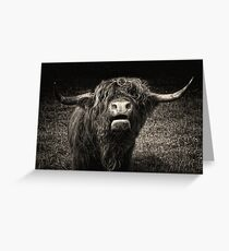 The Bull Greeting Card