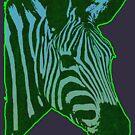 Electric Zebra by deerokone