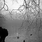 Fog at St Stephen's Green, Dublin by Esther  Moliné