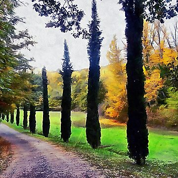 Cypresses in Autumn by ShannathShima