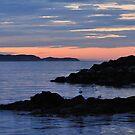 Sunrise at Witless Bay by OldBirch