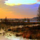 Morning Landscape by ienemien