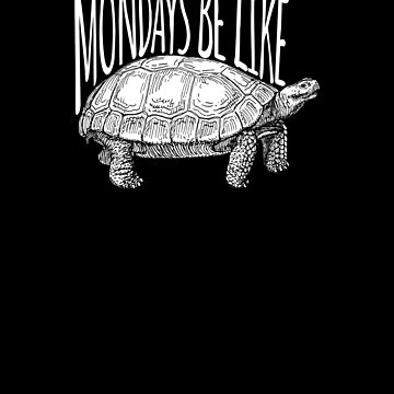 Monday Like Turtle  by apstephens