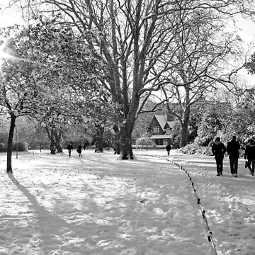 Snow at St Stephen's Green, Dublin by EstherMoline