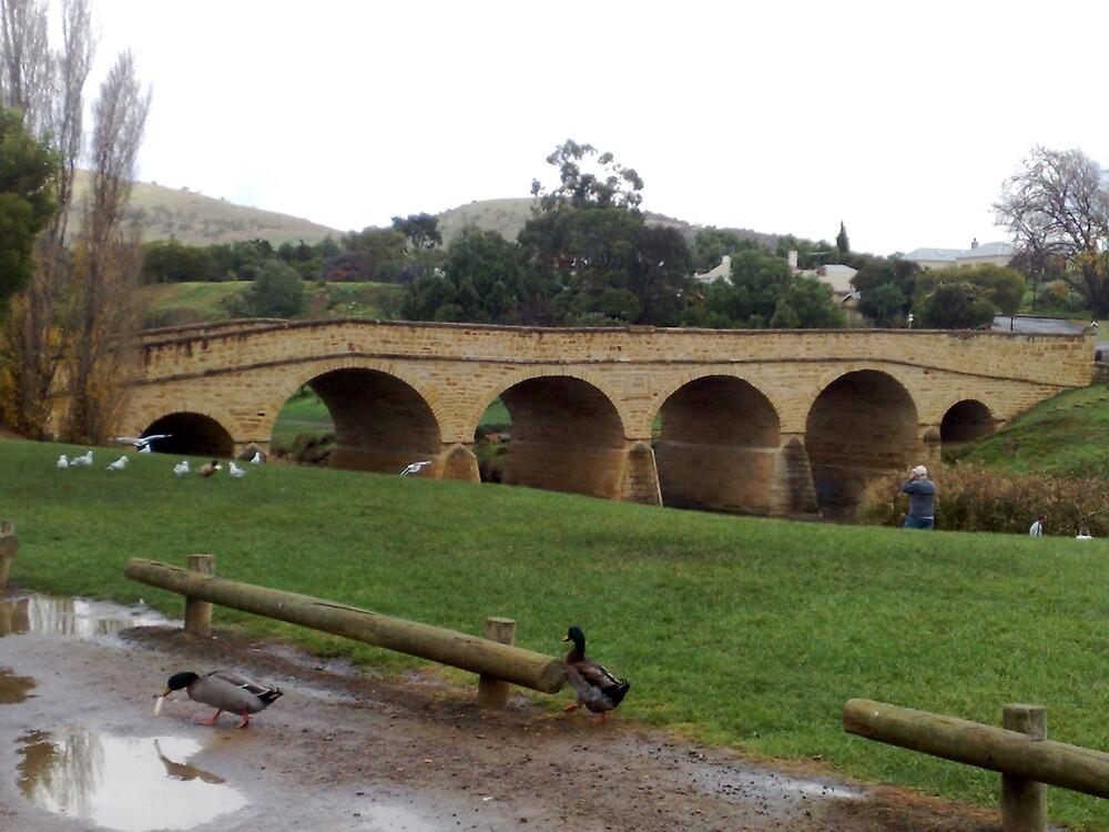 Richmond Bridge by lennie13