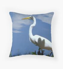 Optical Allusion Throw Pillow