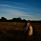 Stone Circle in Colour by Cassi Moghan