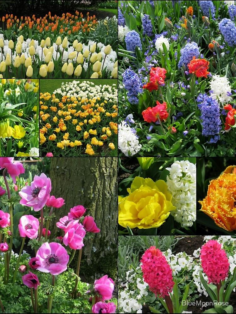 Keukenhof Collage featuring Anemones and Hyacinths von BlueMoonRose