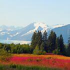 Alaskan landscape by Anthony Goldman