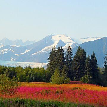 Alaskan landscape by jozi1