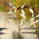 Storks and Egrets Watercolor: Survival   by Elizabeth Rodriguez