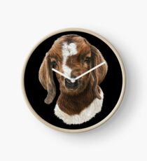 Portrait of a Goat  - Boer Goat Baby Nicklaus  Clock
