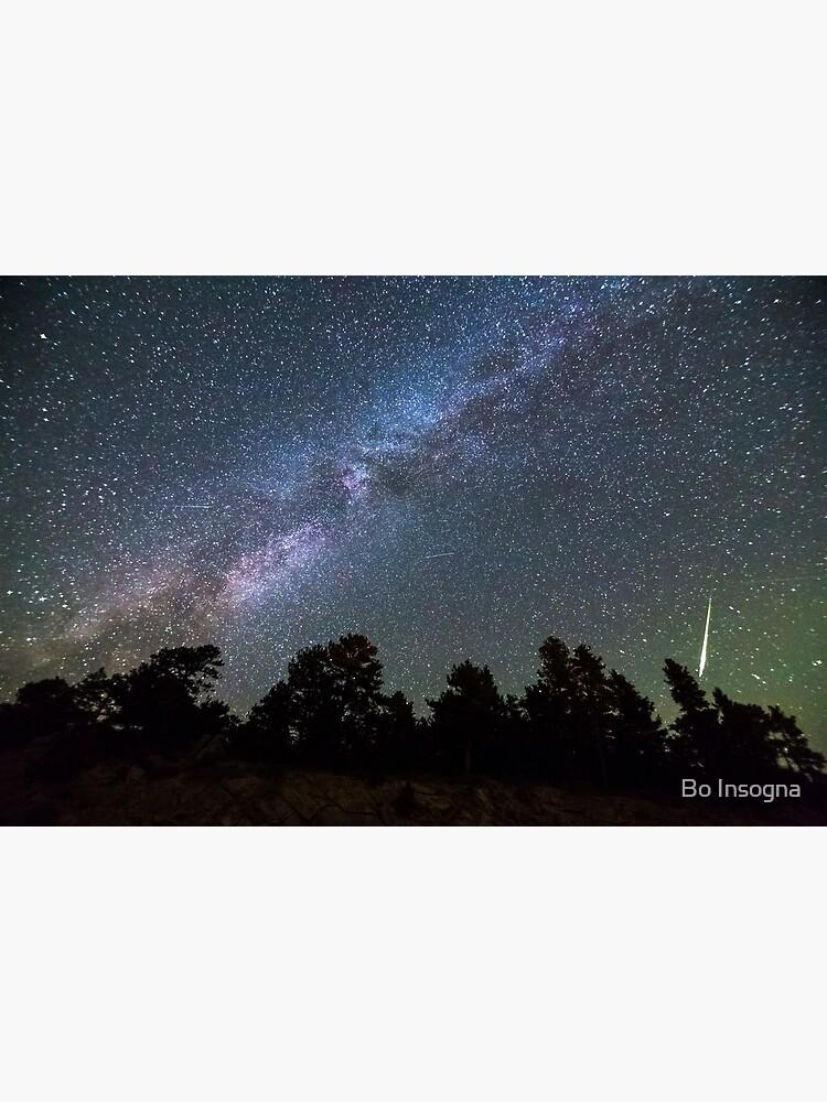Perseid Meteor by mrbo